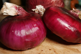 purple_onions_outer_skin_no